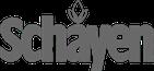 blumen-schayen.de Logo